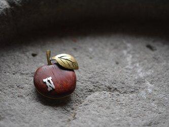 apple broochの画像