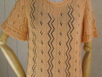 モヘアの半袖セーターの画像