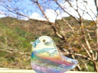 虹色の小鳥 SSの画像