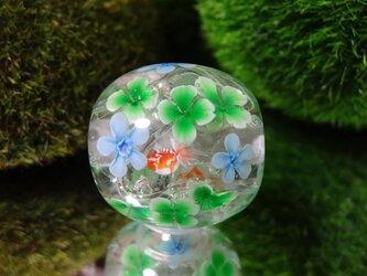 四つ葉のクローバーとブルースター、金魚のとんぼ玉(ガラス玉)の画像