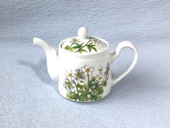 ポット   花散らし    チングルマ絵  高山植物の画像