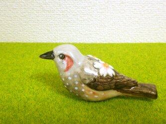 ヒヨドリ&桜 花小鳥/大(陶器)の画像