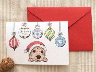 クリスマスカード*オーナメントとサンタ犬の画像