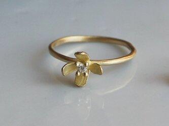 K18 ミズヒキソウのリングの画像