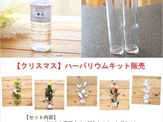 【2本分】【クリスマス】ハーバリウムお試しキット(オイル1本、ガラス瓶2本、花材セット2種類)の画像