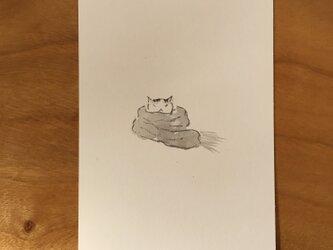 絵葉書/ポストカード <マフラー>の画像