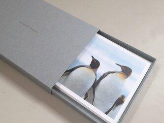 ペンギン達のポストカードセット(12枚入)の画像