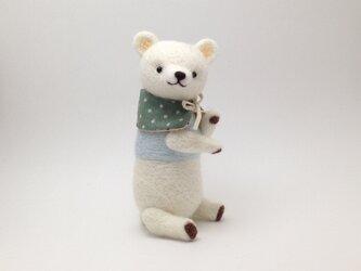 ◆手足の小さなクマさん(3)の画像