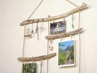 流木の小物掛け、アクセサリーハンガー、流木フォトフレームー42の画像