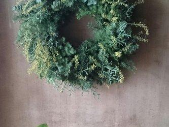 再販 : フレッシュグリーンのクリスマスリースの画像