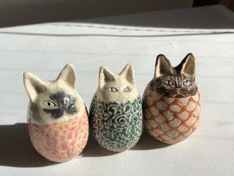 卵猫トリオBの画像
