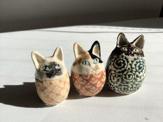 卵猫トリオCの画像