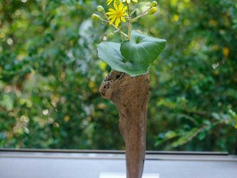 【送料無料】流木の花器、フラワーベース、18の画像