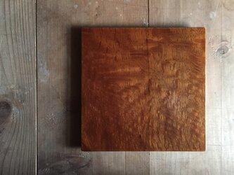 森の朝の角皿 樫 (fmsk1)の画像
