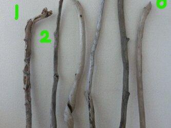 drift wood素材(90~119cm 各1点ずつでの販売)インテリアなどに人気です!の画像