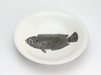 粉引六寸浅鉢(ブチススキベラ-メス-)の画像