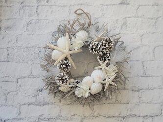 白い小枝のシェル(貝)とヒトデのリース -sea side style- クリスマスにもの画像