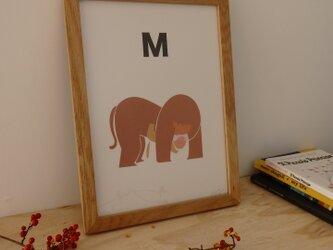 M for Monkey A4サイズポスターの画像