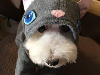 小型犬用なりきりファッションの画像
