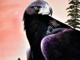 わしは・・・鷲の画像