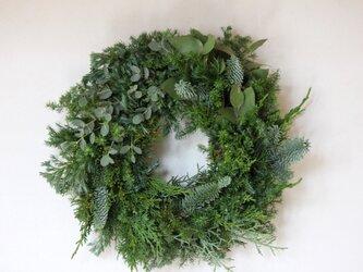 ☆Tさま専用ページ**針葉樹のクリスマスリースの画像