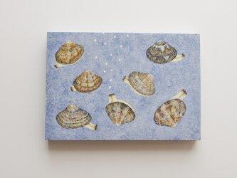 油絵 原画「衣食住」SMサイズ あさり 貝の画像