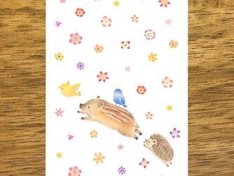"""4枚セット。絵本のような。ポストカード """"うりぼうたちの楽しい日"""" PC-411の画像"""