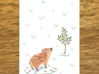 """4枚セット。絵本のような。ポストカード """"雪の降る日"""" PC-413の画像"""