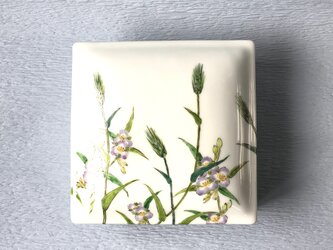 一段重    「花散し」 麦、紫つゆ草絵の画像