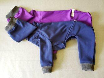 犬服 T様オーダーメイド品:ウィペット用フルスーツ ネイビーブルー&パープルの画像