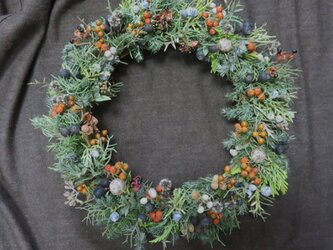木の実のクリスマスリースの画像