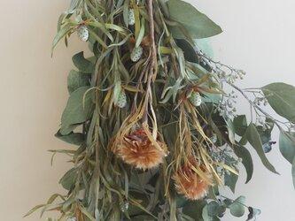 ブルモッサムの香りとユーカリの彩り♫の画像