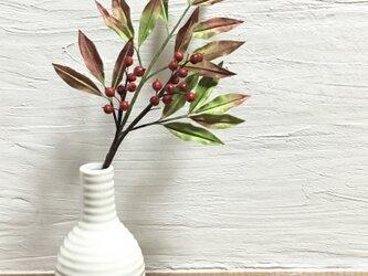南天 赤い葉 赤い実の枝別の画像
