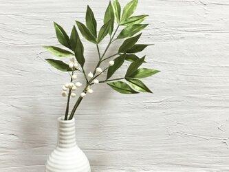 南天 白い実の枝別の画像