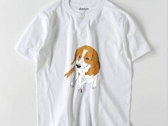 ビーグル 犬 Tシャツ イラスト ゆるかわ メンズ  おすわりの画像