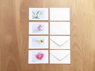 《送料無料》花のメッセージカード 封筒のセット 4枚の画像