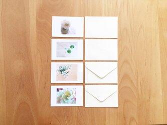 《送料無料》花のメッセージカード 封筒のセット 4枚 ②の画像