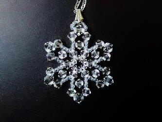 氷の花・M07の画像