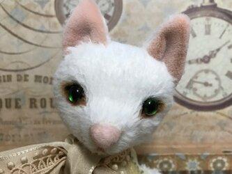 ビスコースの白猫 ルナの画像