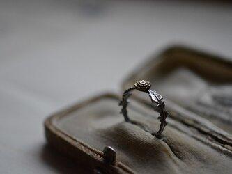 ※order : dandelion ringの画像