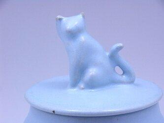 アイスブルー・キャンディーBox・ニャンコー1の画像