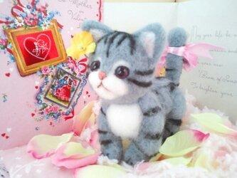 羊毛フェルト ヨチヨチ歩きのアメショ子猫ちゃんの画像