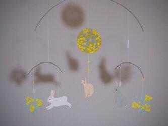 モビール*ウサギ・みもざの画像