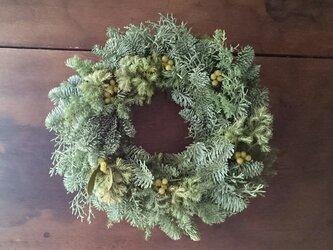 フレッシュグリーンのクリスマスリース(ヤドリギ)の画像