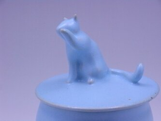アイスブルー・キャンディーBox・ニャンコー5の画像
