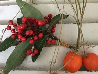 鮮やか赤い実万両と蔓付きカラスウリの実のセットの画像