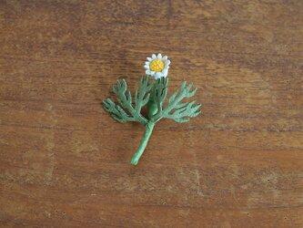 ブローチ カモミールの画像