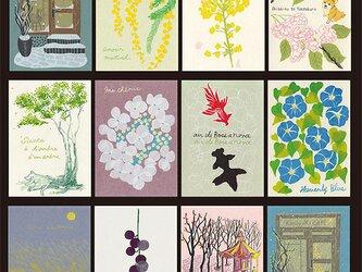 2019カレンダー+季節を彩る12枚のポストカードの画像