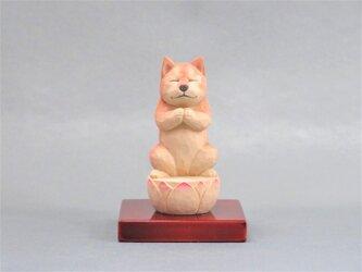 木彫りの犬仏さま 柴犬 犬仏1812の画像