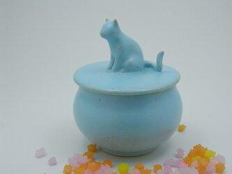 アイスブルー・キャンディーBox・ニャンコー6の画像